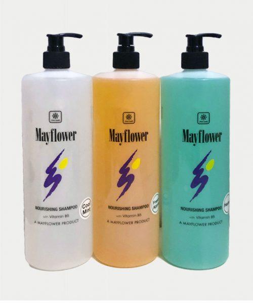 mayflower shampoo